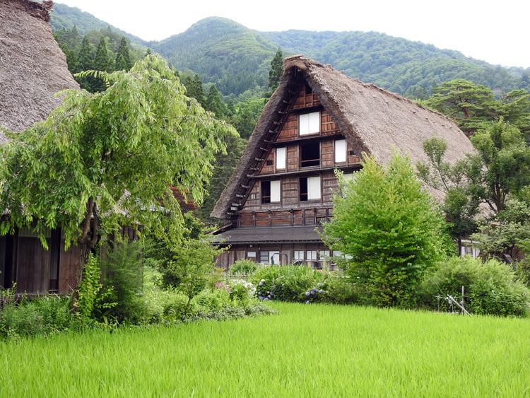 今年の夏休みは自然いっぱいの白川郷へ 7