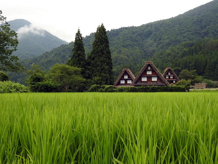 夏休み・お盆の旅行は、世界遺産を満喫する楽しい旅へ 6