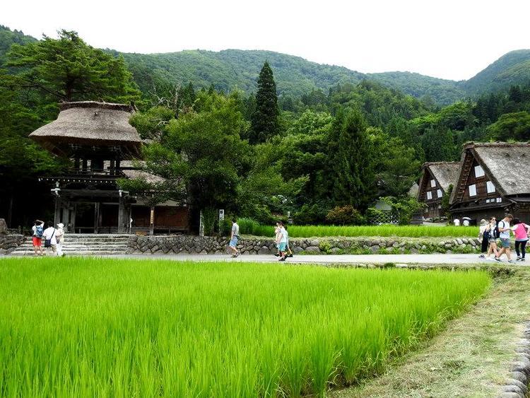 夏休みのお盆期間に白川郷へご旅行 5