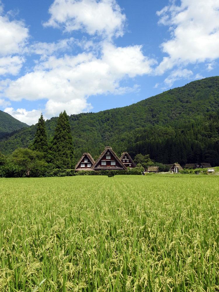 夏休みのピークが去って少し落ち着いたこの時期に白川郷へ10