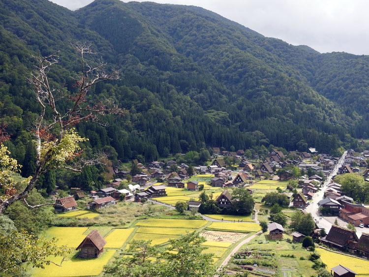 白川郷では稲刈りなどの風景が見受けられる季節です8