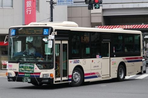S31742