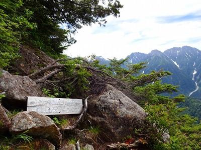 笠岳 (121)
