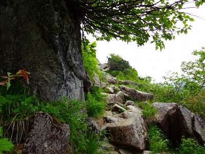 笠岳 (129)