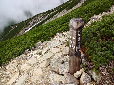 笠岳 (175)
