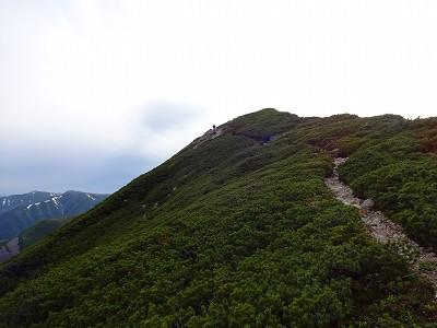 笠岳 (350)