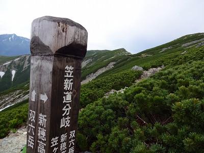 笠岳 (379)