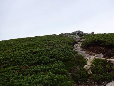 笠岳 (382)