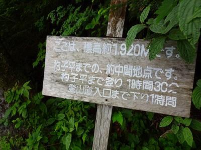 笠岳 (451)