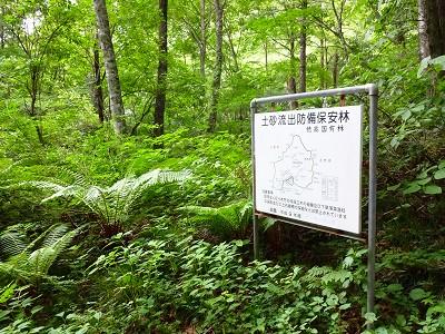 笠岳 (493)