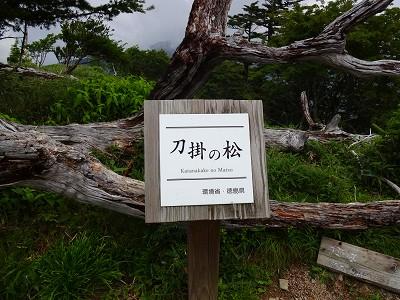 剣山 (53)