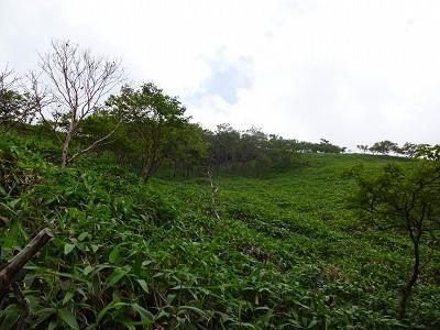 剣山 (151)