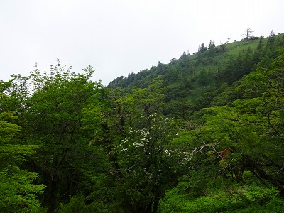 剣山 (171)
