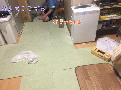 20170720-002135-01.jpg