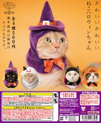 cat_halloween.jpg
