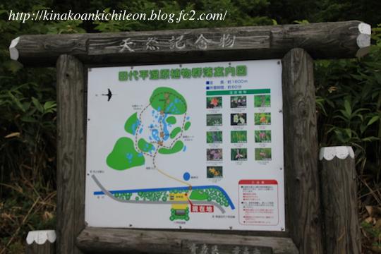 170823 Tashirodaira 3