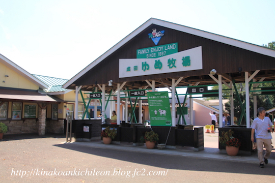 170831 Yumebokujo 1