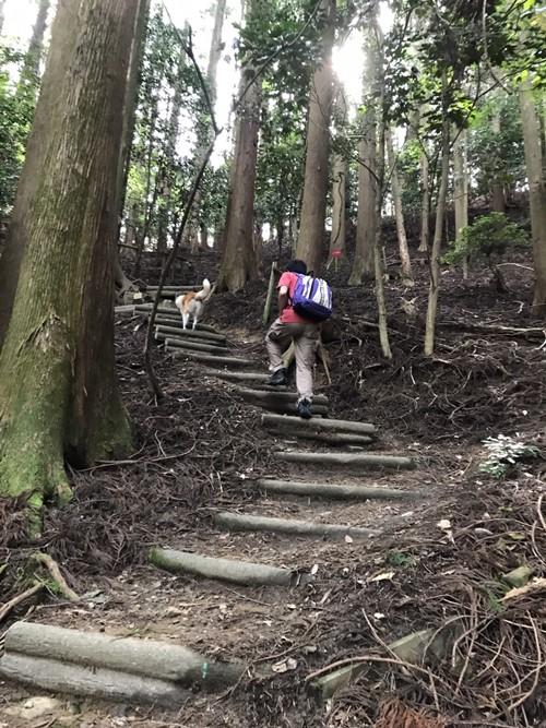 ポンポン山03