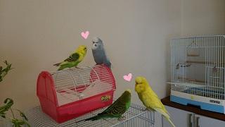 love10-2.jpg
