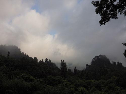 170719 雨上がり1