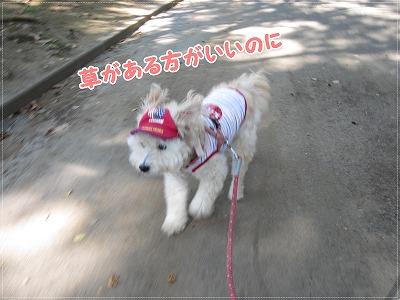 暑いけど公園4