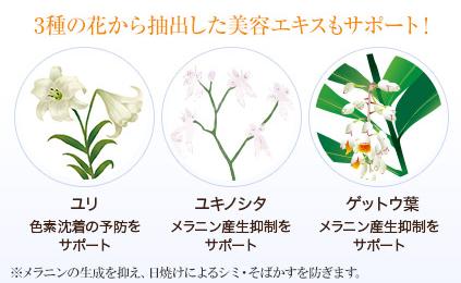 BIHAKU 植物エキス
