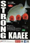 KAAEE1.jpg