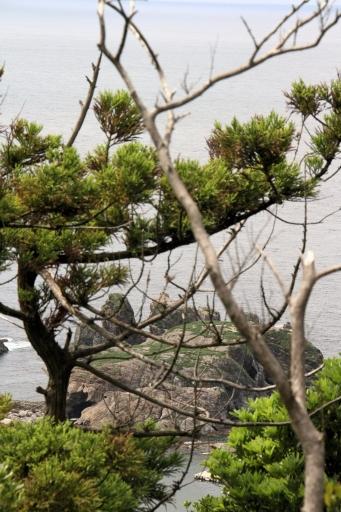 天一山から見た経島