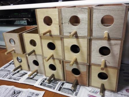 ブンチョウ巣箱1