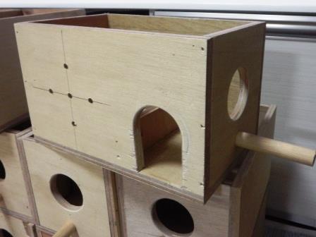 ブンチョウ巣箱2