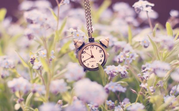 clock-alarm-chain-flowers-nature-1_convert_20170824053924.jpg