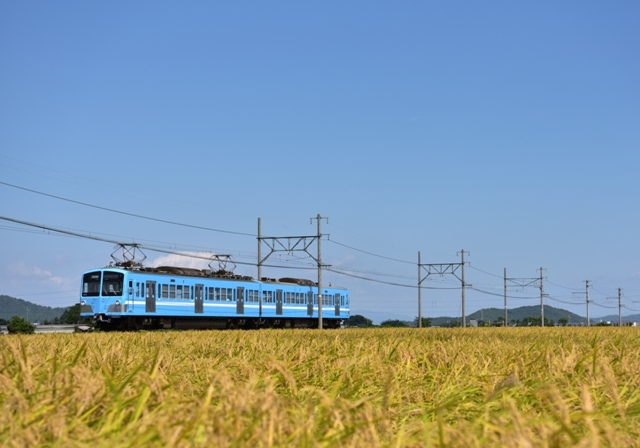 DSC_3576o.jpg