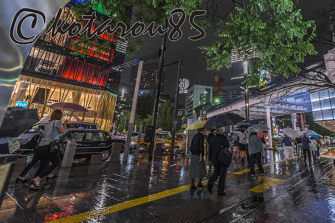 雨のハナキン4 20170923