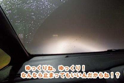 雨男 11