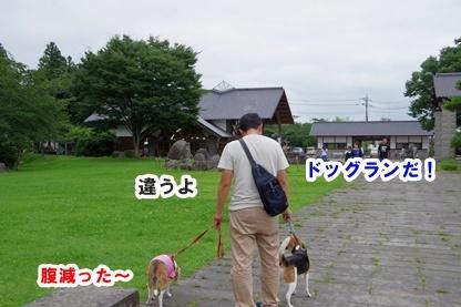 道の駅 4