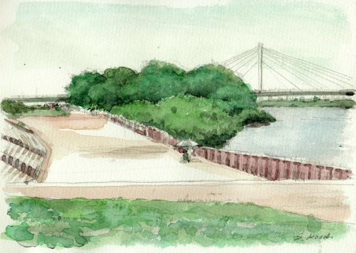 淀川の散歩道 (700x498)