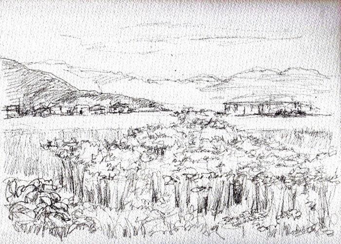 彼岸花の咲く風景 デッサン (700x501)