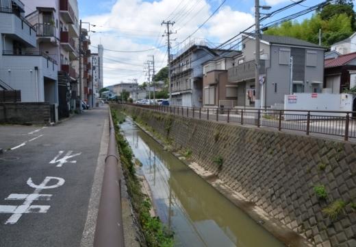 170705-113349-横須賀衣笠20170705 (28)_R