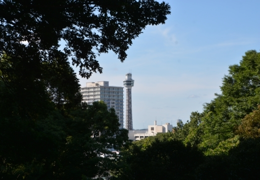 170711-161242-横浜山手洋館スペシャル201707 (288)_R