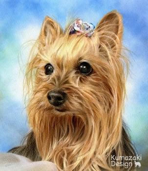ペット肖像画 ペットの絵 ペット画 似顔絵 遺影 イラスト 犬 いぬ 小犬 子犬 色えんぴつ画 色鉛筆画