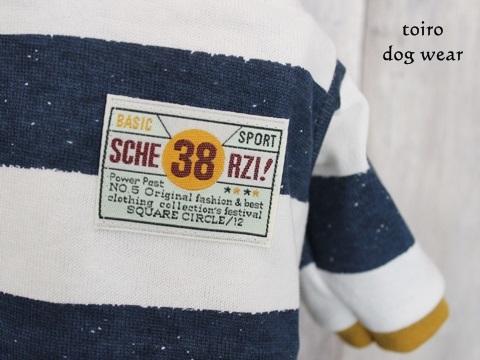 17092102.jpg
