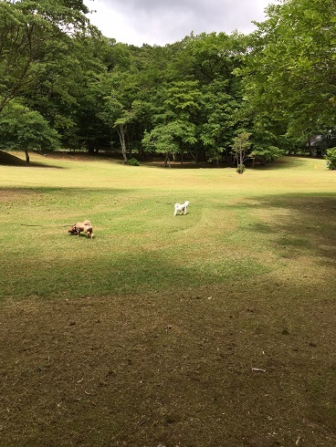20170717公園