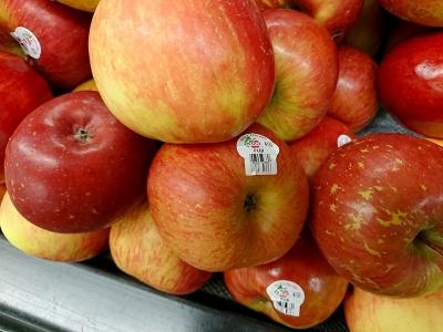 NZ産のふじりんご