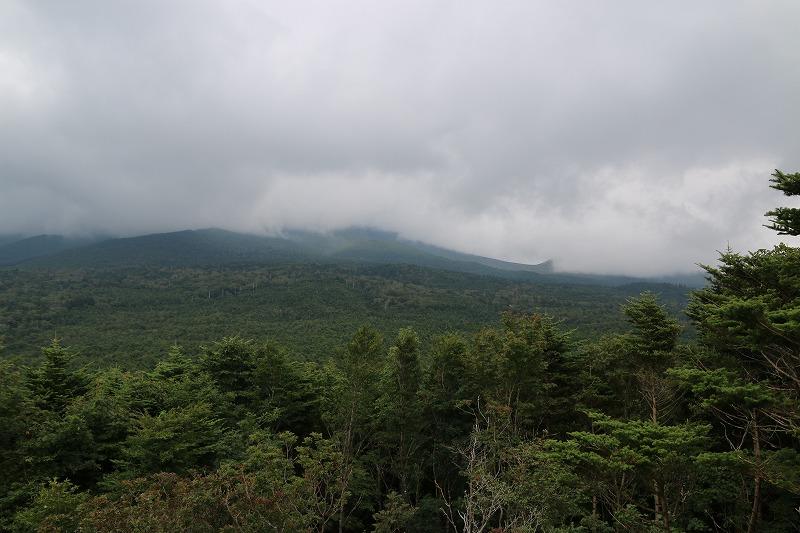 山道のけしき