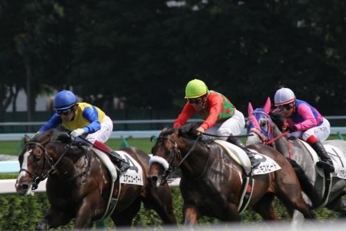 201707札幌競馬 (31)
