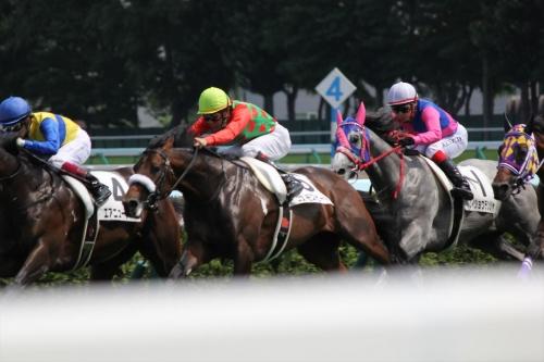 201707札幌競馬 (33)