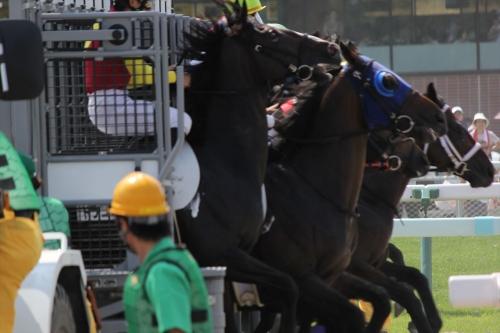 201707札幌競馬 (45)