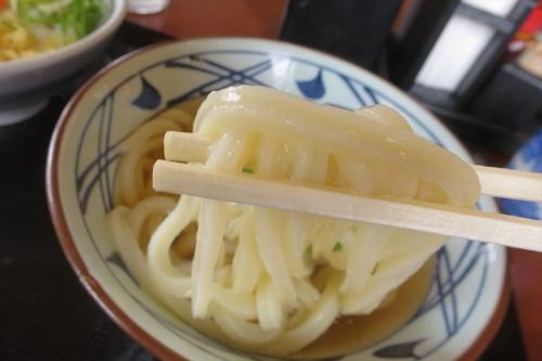 丸亀製麺㊺ (6)_R