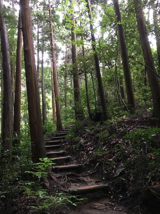 鎌倉湖91