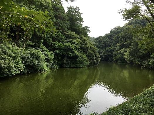 鎌倉湖93